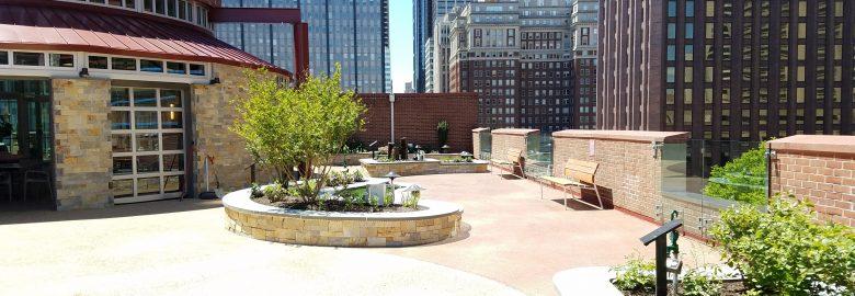 Healing Garden Rooftop View